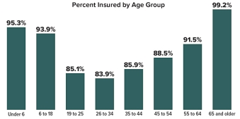 Percent insured by age group: Under 6=95.3%, 6 to 18=93.9%, 19 to 25=85.1%, 26 to 34=83.9%, 35 to 44=85.9%, 45 to 54=88.5%, 55 to 64=91.5%, 65 and older=99.2%.